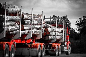 transport drewna na drodze