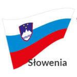 usługi transportowe słowenia