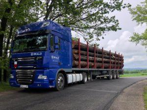 transport drewna wrocław